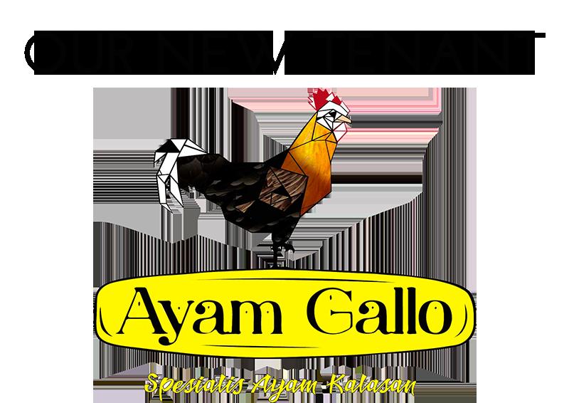 Ayam Galo